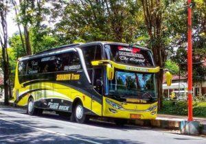 Sewa Bus Surabaya - Bus SURABAYA TRANS