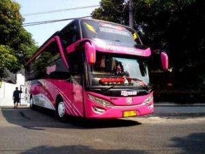 Bus Pariwisata dj99