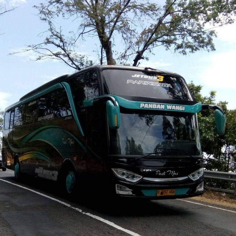 Bus Pariwisata Sidoarjo - Bus Padi Mas