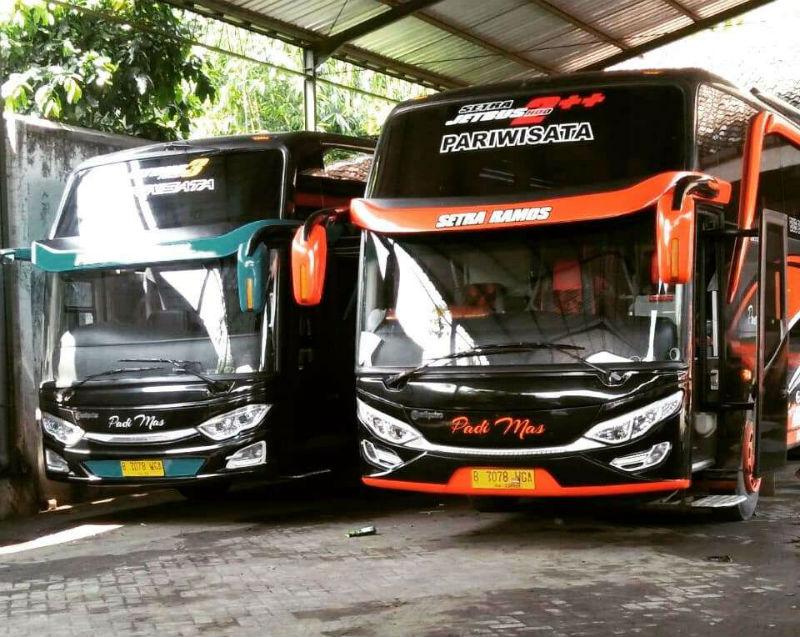 Sewa Bus Pariwisata Sidoarjo - Bus Padi Mas