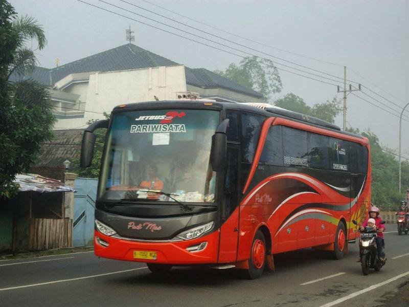 Sewa Bus Pariwisata di Sidoarjo - Bus Padi Mas
