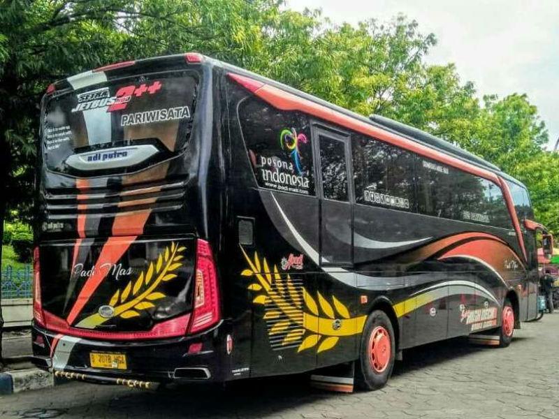 Sewa Bus Sidoarjo - Bus Padi Mas