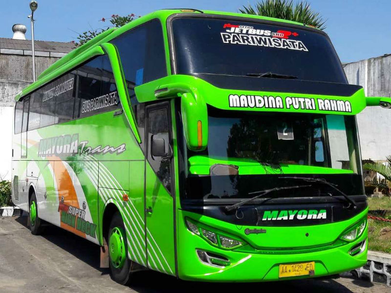 Bus - Mayora Trans