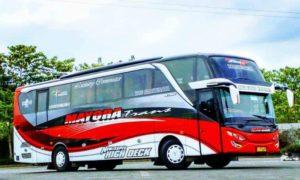 Bus Pariwisata - Mayora Trans