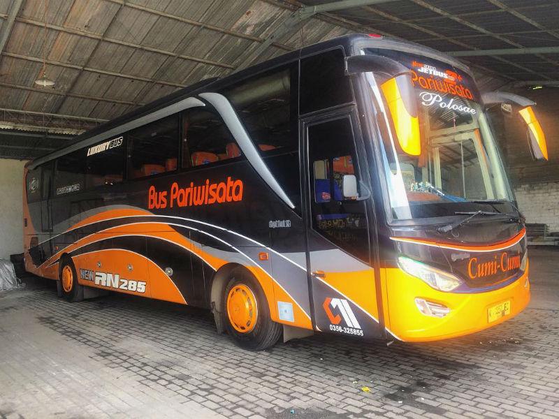 Bus Pariwisata Tuban - Cumi-Cumi