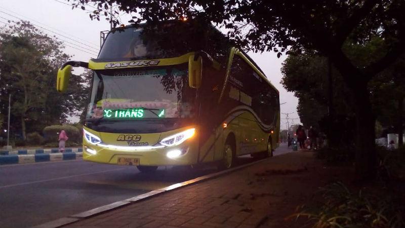 Sewa Bus - ACC Trans