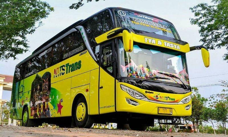 Sewa Bus - NTTS Trans