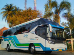 Sewa Bus Pariwisata Purworejo - Sanur Transport