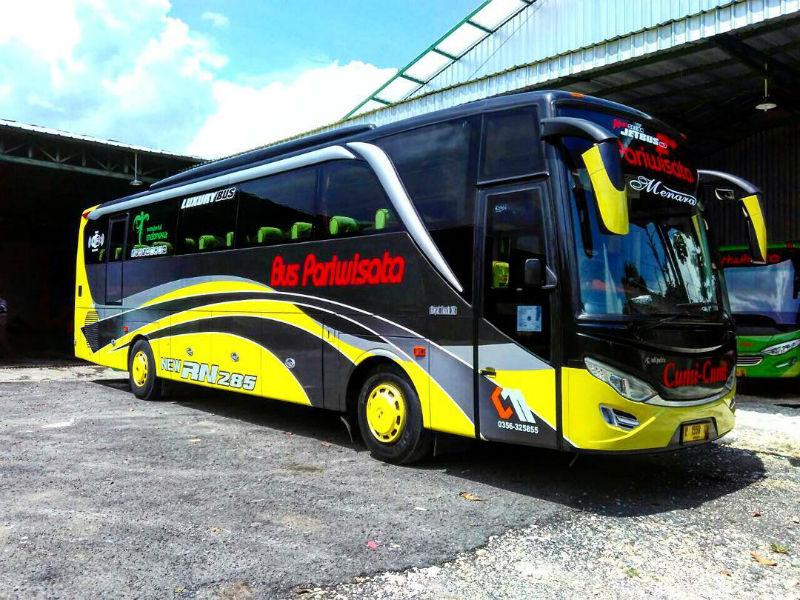 Sewa Bus Pariwisata Tuban - Cumi-Cumi