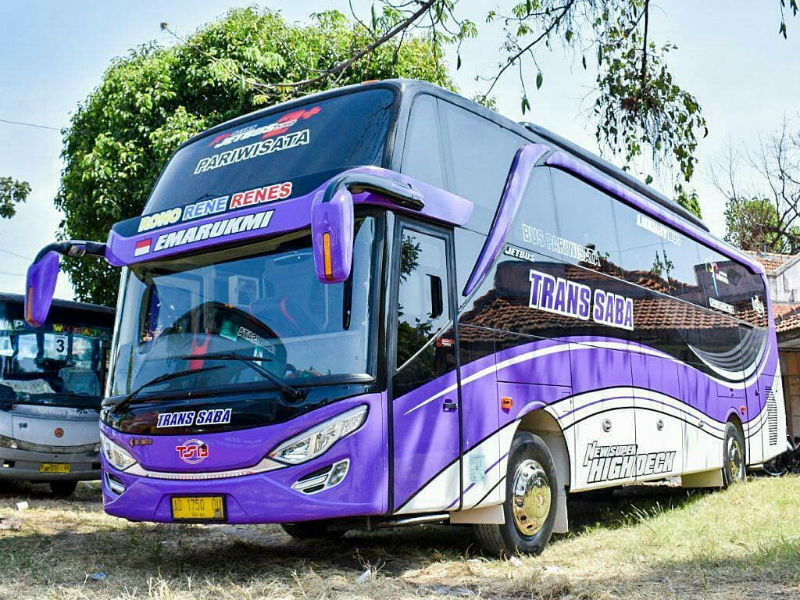 Sewa Bus - Trans Saba